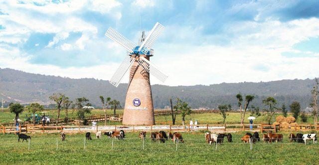 vinamilk organic milk farm (ảnh: st)