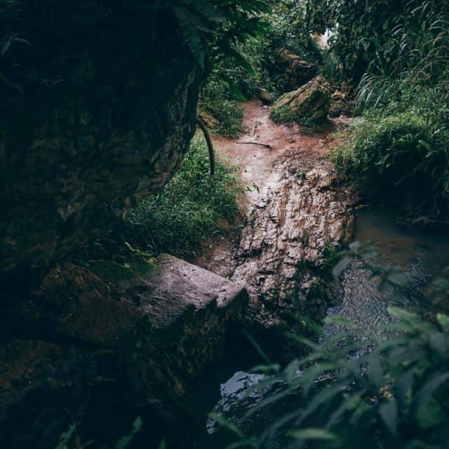 Một góc nhỏ tại đường lên ngọn thác (Ảnh ST)