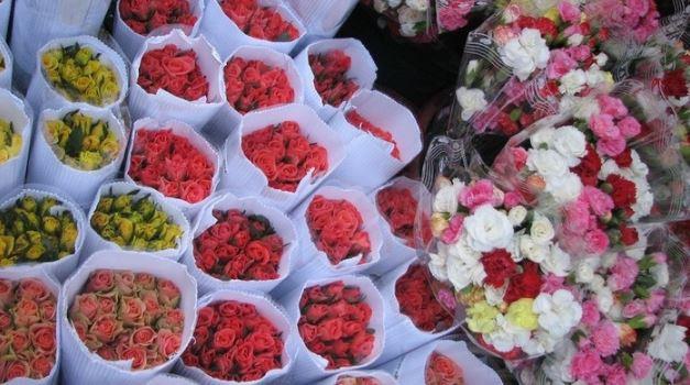kinh nghiệm chọn hoa