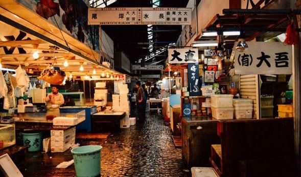 toàn cảnh chợ cá Tsukiji