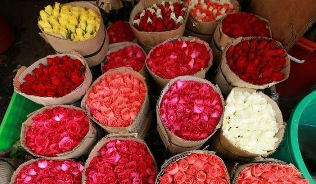 vẻ đẹp của hoa tại chợ Hồ Thị Kỷ