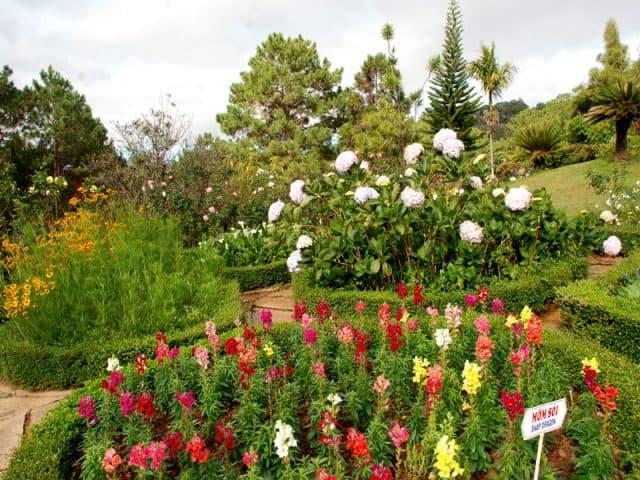 vườn hoa Minh Tâm (Ảnh: ST)