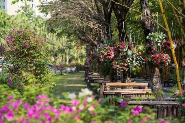 Khu đô thị xanh Ecopark gần Hà Nội (Ảnh: ST)
