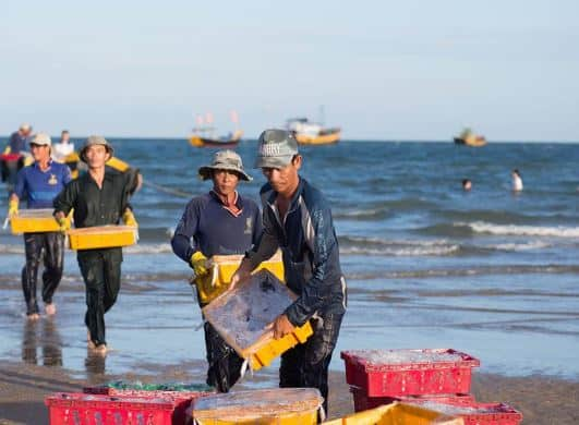 Phuoc Hai fishing village