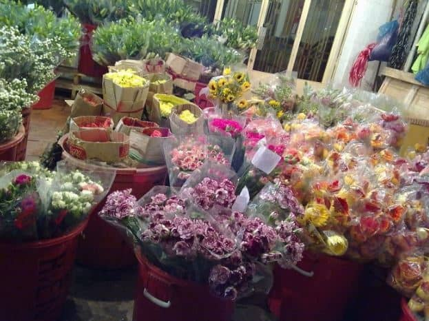 hoa tươi chợ hoa hồ thị kỷ
