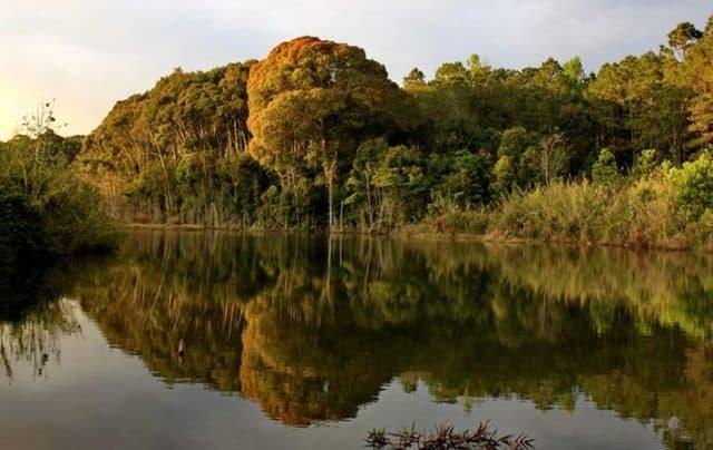 Khám phá Vườn quốc gia Chư Mom Ray - di sản ASEAN độc đáo