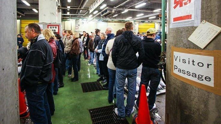 khung cảnh xếp hàng để tham dự phiên đấu giá cá ngừ