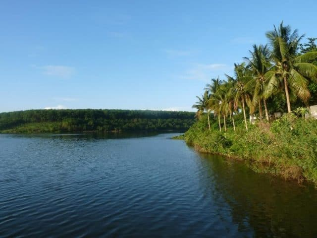 Around the Suoi Lam Lake there are rows of soaring green areca