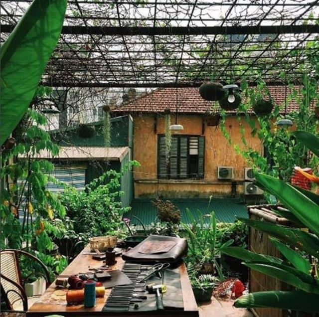 Mảng xanh nhỏ trong vườn nhà ai