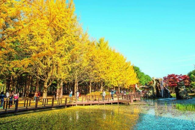 du lịch Hàn Quốc mùa nào đẹp