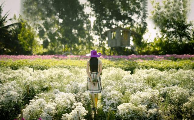 Mãn Đình Hồng xứng danh thiên đường hoa mặt đất (ảnh ST)
