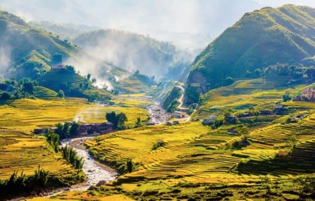 Ruộng lúa ngập tràn trong mây mù (ảnh ST)