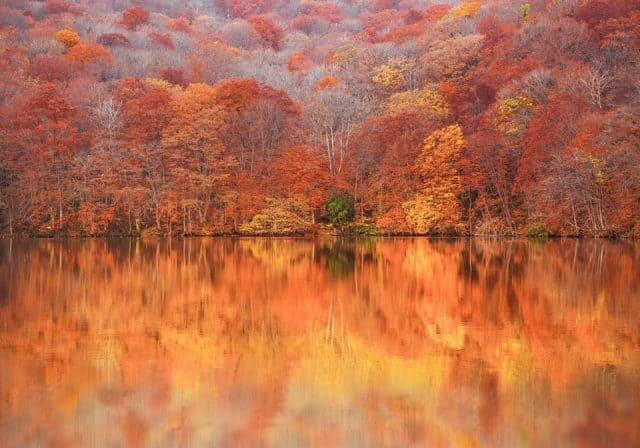 Hồ Tsuta Numa - Aomori vào mùa thu (ảnh ST)