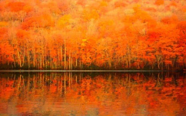 Lá mùa thu phản chiếu xuống mặt hồ (Ảnh ST)