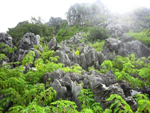 Vẻ đẹp hoang sơ ở Núi Voi (ảnh ST)