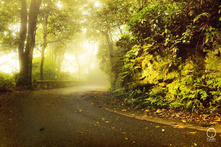 Cảnh đẹp như tranh ở vườn Quốc gia Ba Vì