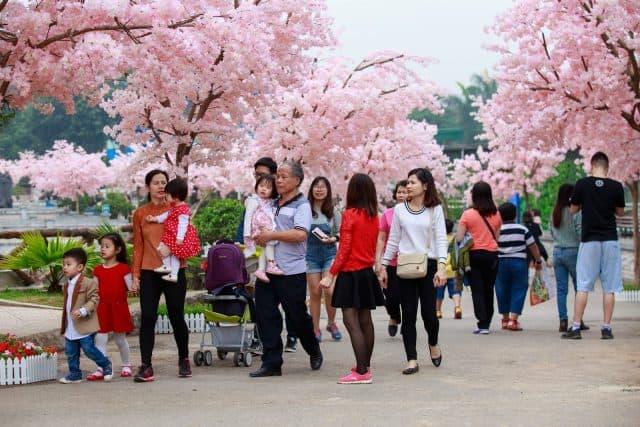 Thiên đường Bảo Sơn là địa điểm rất lý tưởng để cả gia đình cùng vui chơi, nghỉ dưỡng trong dịp tết Nguyên Đán. Ảnh: ST