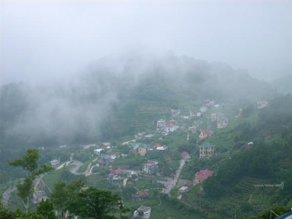 Tam đảo được mệnh danh là Đà Lạt thứ hai thu hút nhiều bạn trẻ chinh phục