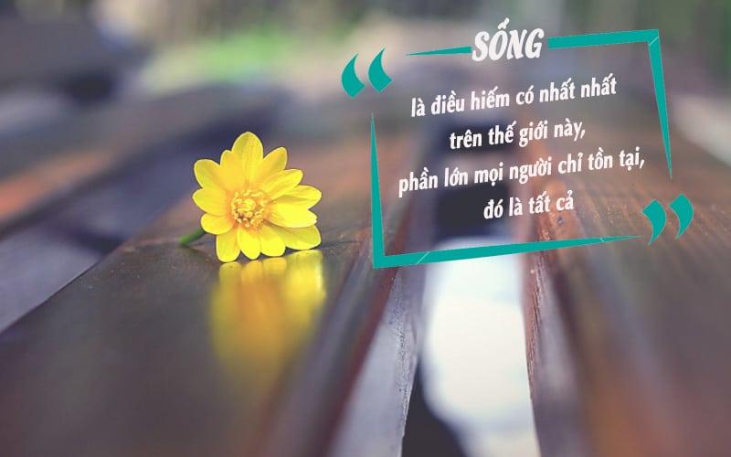 Thơ về cuộc sống, tuyển tập những bài thơ hay ý nghĩa