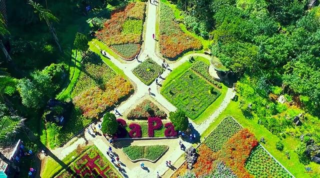 Vườn hoa Hàm Rồng Sapa khoe sắc thắm quanh năm