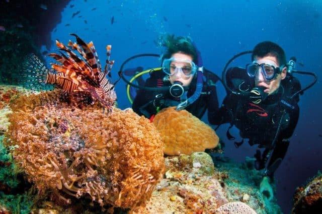 Lặn biển ngắm san hô chắc chắn sẽ là một trải nghiệm thú vị mà bạn và người yêu không thể quên được.