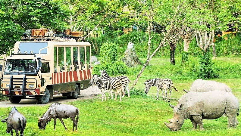 Công viên FLC Zoo Safari Park Quy Nhơn với rất nhiều loại động vật hoang dã tự nhiên. Ảnh St