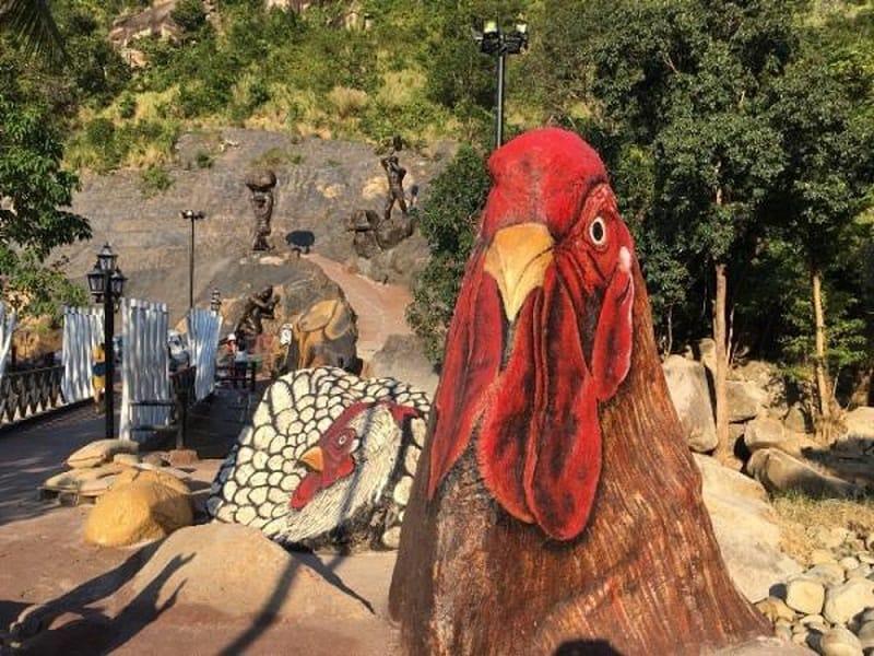 Con gà - con giáp thứ 10 trong 12 con giáp theo truyền thống người Việt. Ảnh ST