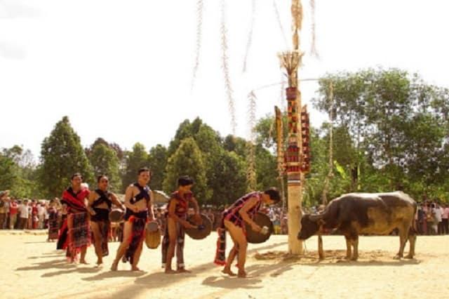 Lễ hội đâm trâu diễn ra ở đâu và khi nào?