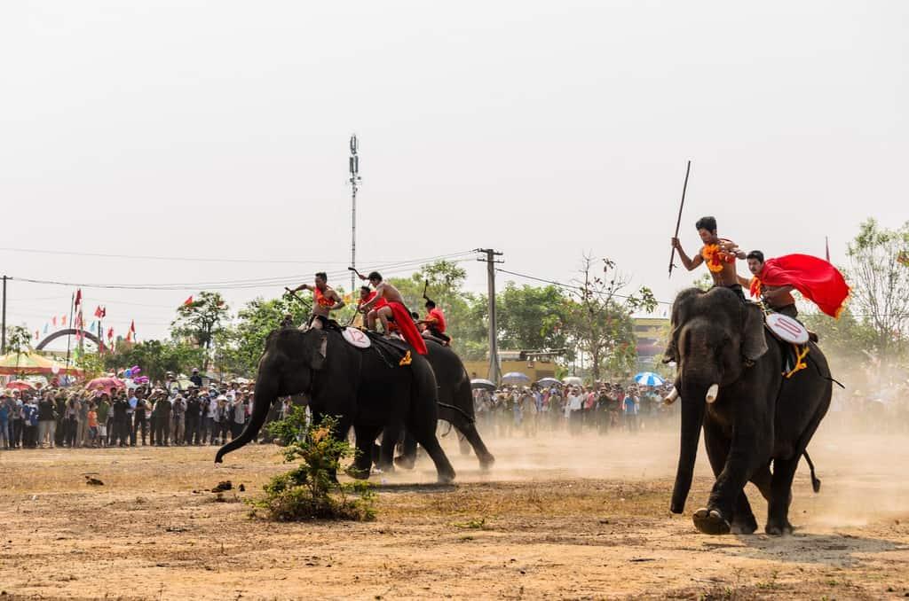 Nét độc đáo của lễ hội đua voi ở Tây Nguyên 2020