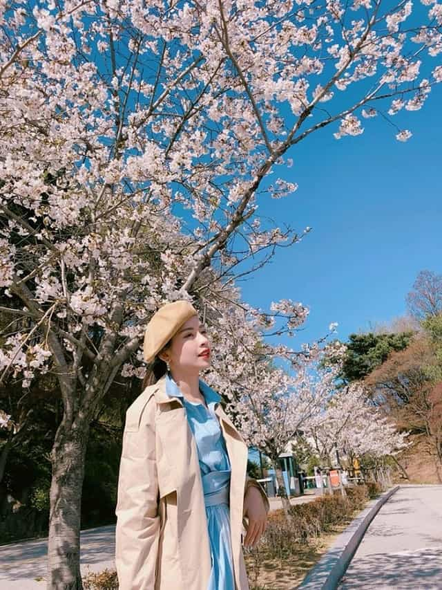 Du lịch Nhật Bản tháng 4