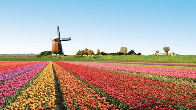 Du lịch Hà Lan tháng 4