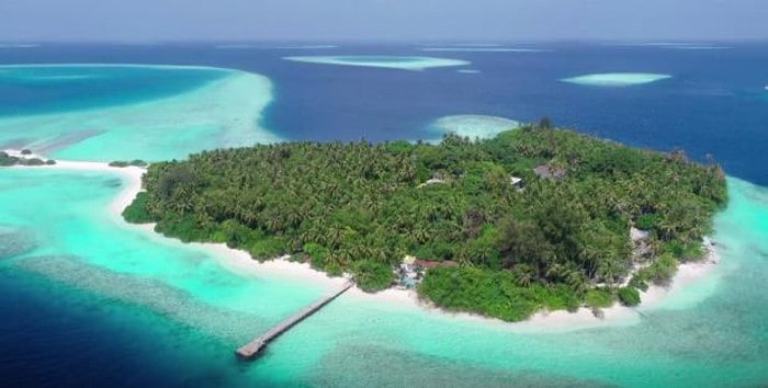 resort ncov đầu tiên trên thế giới
