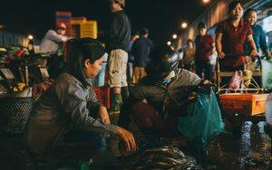 Kinh nghiệm đi chợ đầu mối Bình Điền Hồ Chí Minh từ A-Z