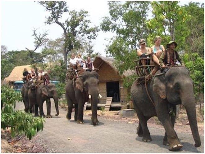 Bản Đôn - Nơi thuần dưỡng voi rừng