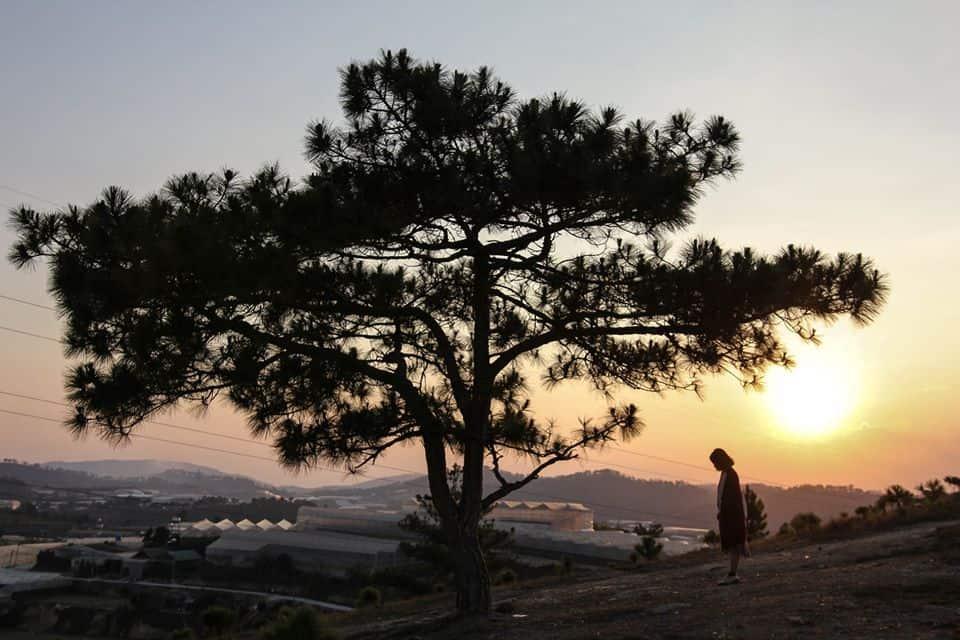 Hoàng hôn xuyên qua ngọn đồi. Hình: Hoàng Linh Hà