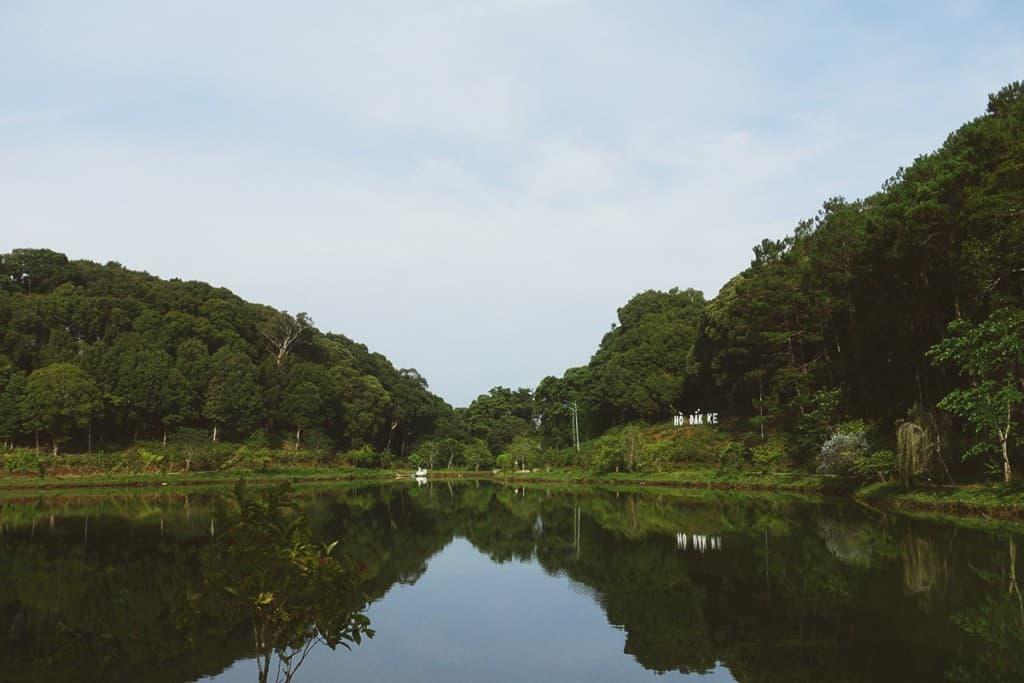 Hồ được ôm trọn bởi những hàng thông già. Hình: Kê Bi