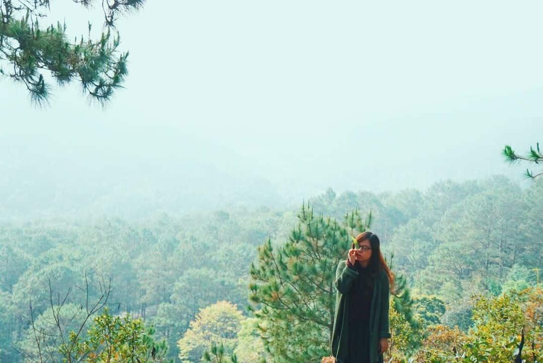 Những con đường sẽ dẫn bạn đến những triền đồi xanh thật cao. Hình: Uyên Bùi