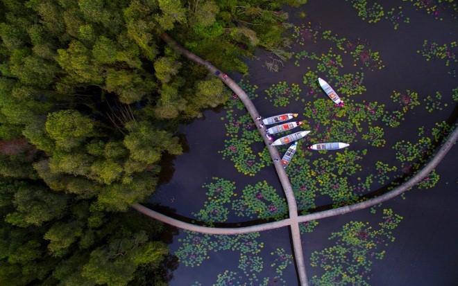 Làng nổi Tân Lập - Ngập tràn sắc xanh hoà quyện cùng dòng nước yên bình