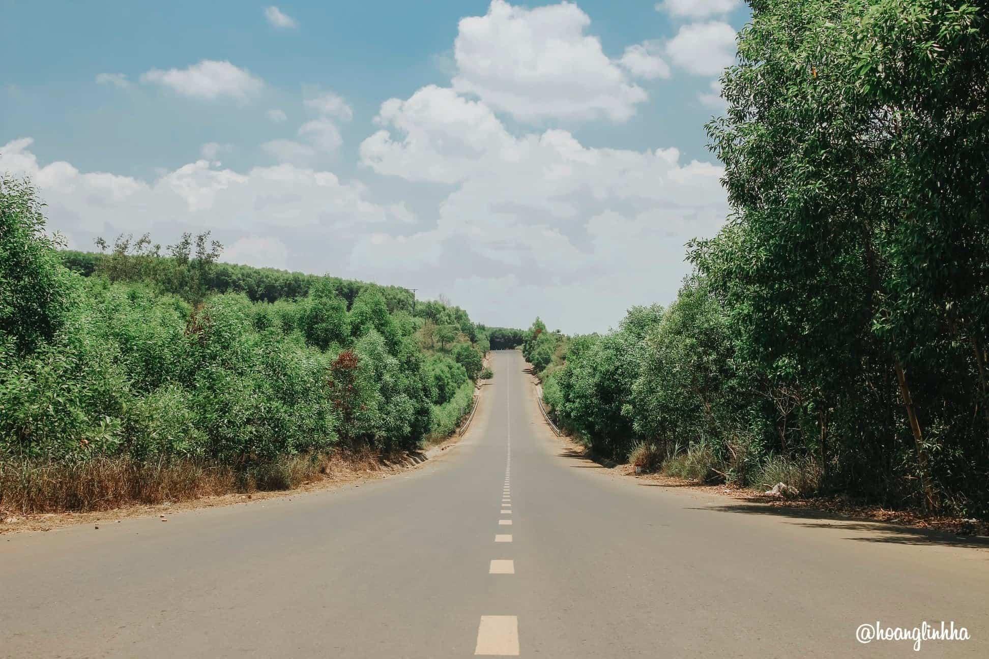 Đường đến nhà thờ Bác Hồ. Hình: Hoàng Linh Hà
