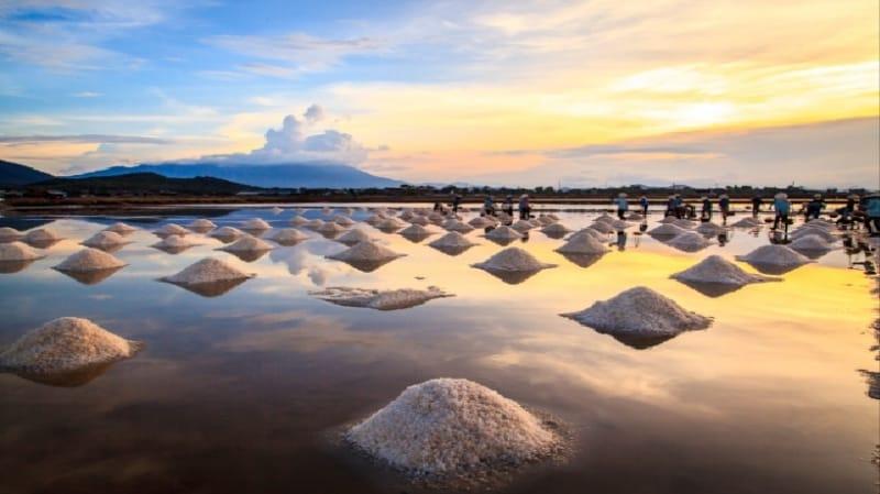 Những gò muối đẹp ngỡ ngàng được ánh nắng mặt trời phản chiếu lấp lánh diệu kỳ
