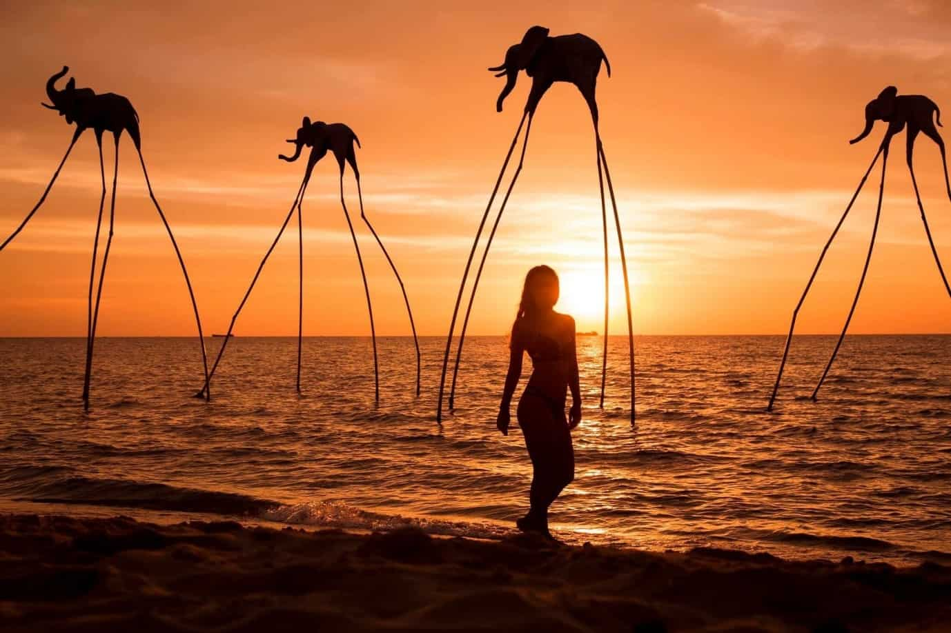 Cho bạn thỏa thích sống ảo. Hình: Sunset Sanato