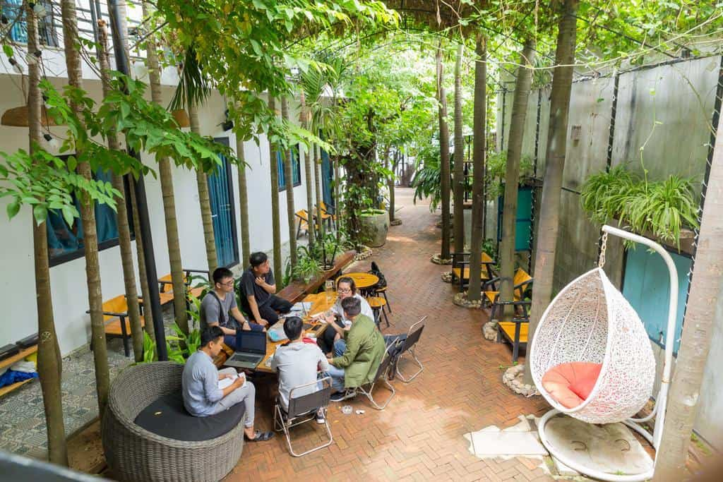 Homestay sở hữu khoảng sân với những hàng cau xanh mát, nơi du khách có thể ngồi trò chuyện, nghỉ ngơi và thư giãn
