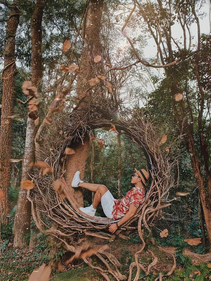 """Những chiếc """"tổ chim"""" treo lơ lửng giữa rừng xanh cho bạn thỏa thích tạo dáng. Hình: Cường Quốc Phạm"""