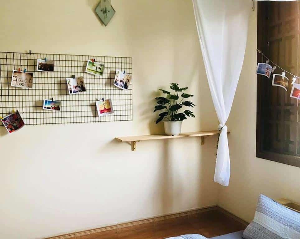 Những những ảnh đầy kỉ niệm được lưu giữ ở khắp nơi trong Soha homestay Đà Nẵng