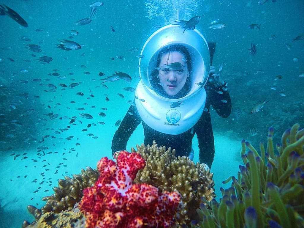 Những rạn san hô đủ hình đủ màu. Hình: @_du.ien