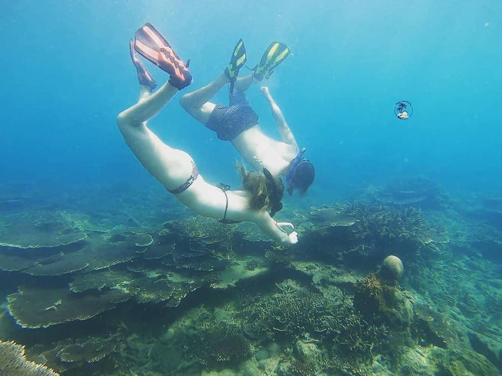 Trải nghiệm lặn san hô thú vị ở Côn Đảo. Hình: @tripswithkitty