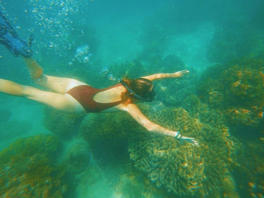 Lặn ngắm san hô ở Cù Lao Chàm. Hình: @jess_french3