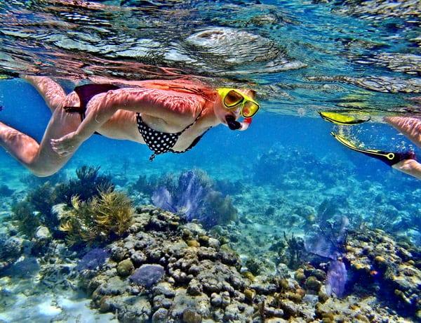 Lặn xuống lòng đại dương mênh mông ngắm san hô và sinh vật biển đầy thú vị
