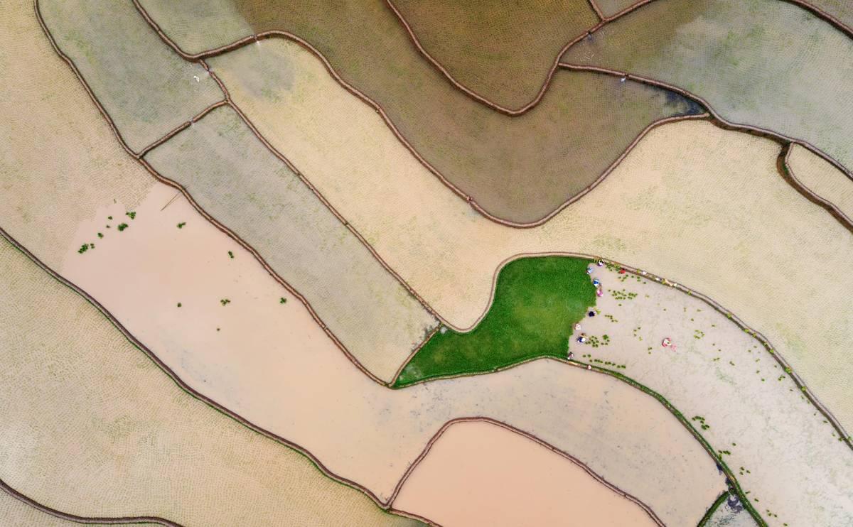 Mùa nước đổ Tú Lệ phản chiếu như gương trời. Hình: Nguyễn Tấn Tuấn