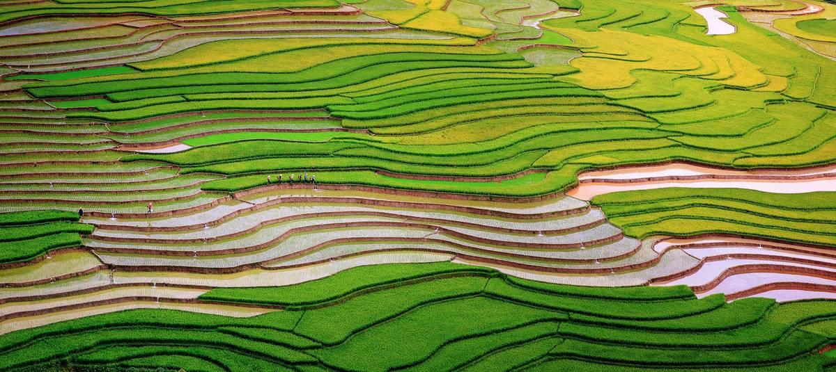 Vùng núi phía Bắc mùa nước đổ. Hình: Nguyễn Tấn Tuấn